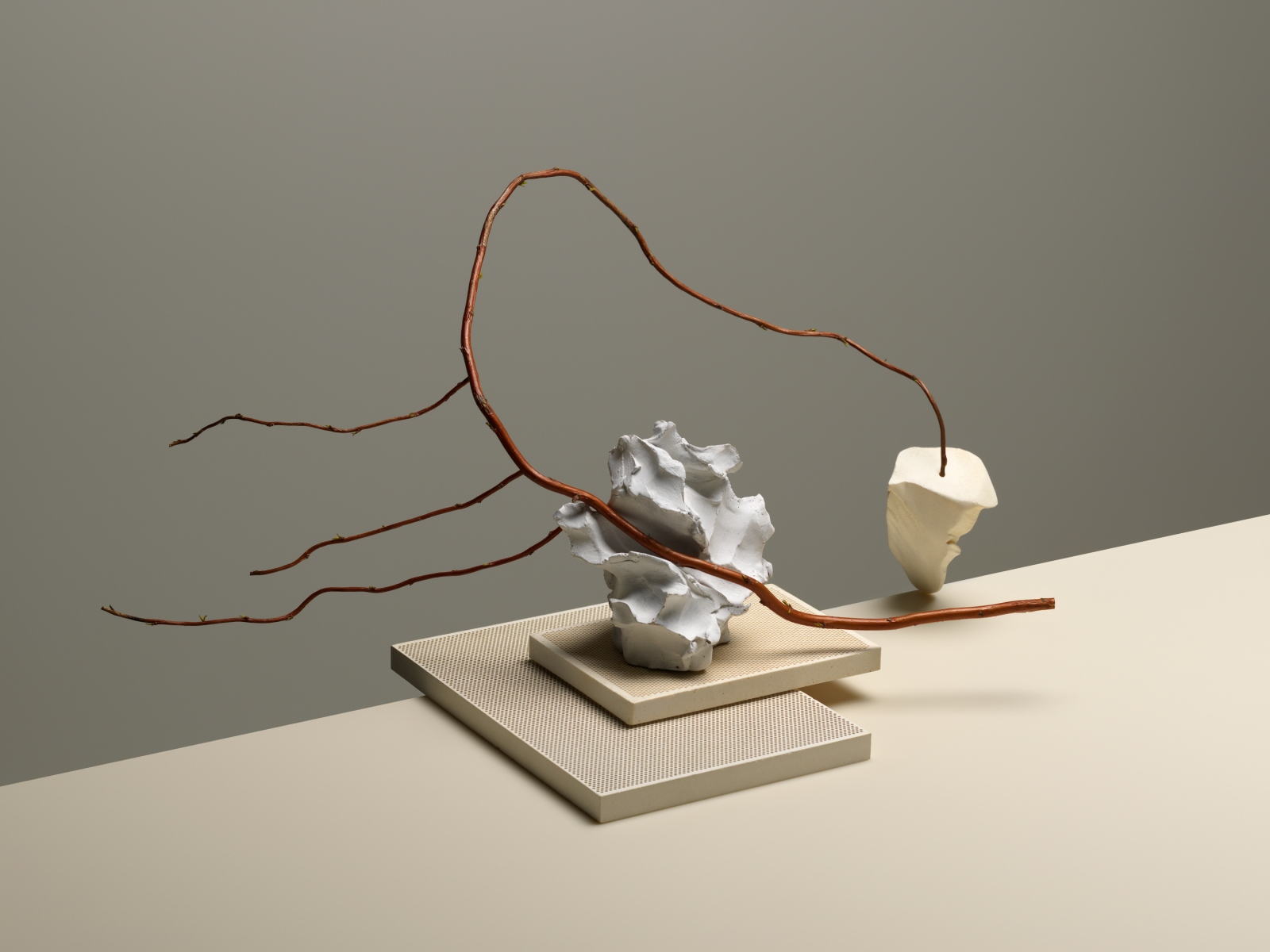 Studies from Spring – Carl Kleiner